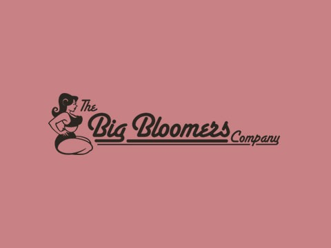 Big Bloomers - Magento eCommerce Website Agency Bristol