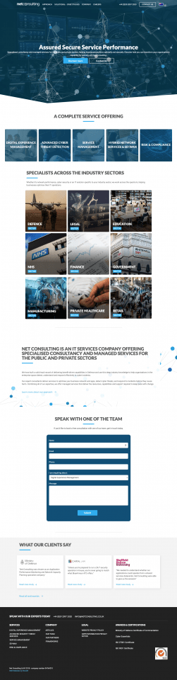 Net Consulting B2B Desktop Homepage Screenshot